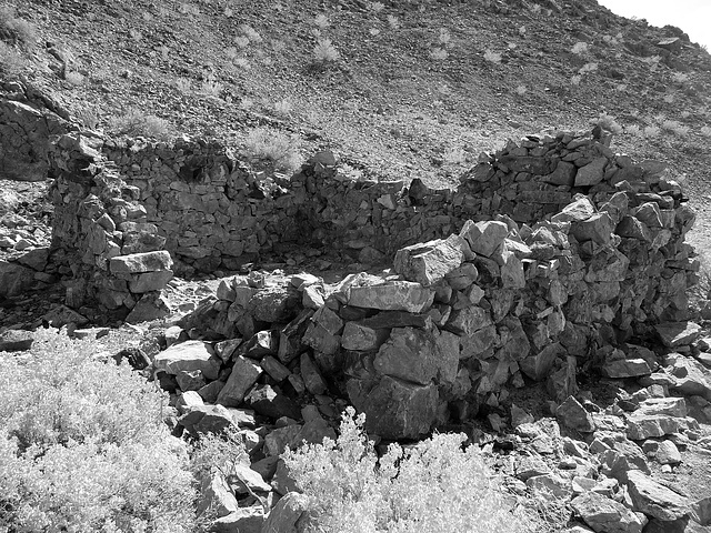 Saratoga Springs - Death Valley (1600)