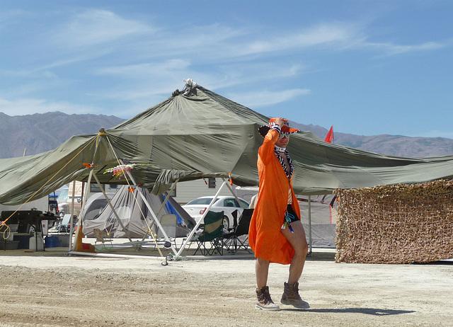Orange Walker (1091)