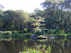 Parc floral à Pont l'Abbé