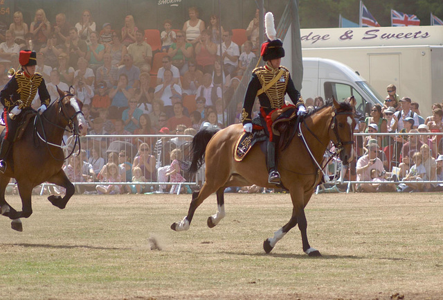 Musical Drive Kings Troop Royal Horse Artillery 20