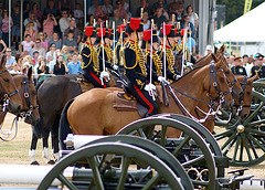 Musical Drive Kings Troop Royal Horse Artillery 16
