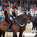 Musical Drive Kings Troop Royal Horse Artillery 15