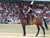 Musical Drive Kings Troop Royal Horse Artillery 17