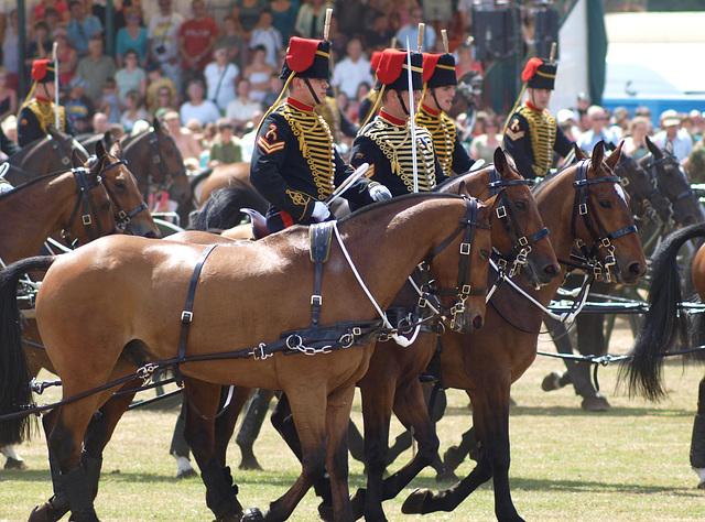 Musical Drive Kings Troop Royal Horse Artillery 14