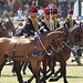 Musical Drive Kings Troop Royal Horse Artillery 14