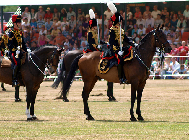 Musical Drive Kings Troop Royal Horse Artillery 10