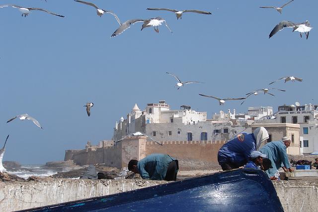 Maroc 2008 298