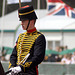 Musical Drive Kings Troop Royal Horse Artillery 9