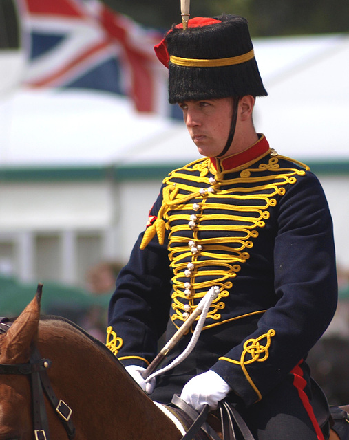 Musical Drive Kings Troop Royal Horse Artillery 8
