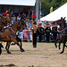 Musical Drive Kings Troop Royal Horse Artillery 5