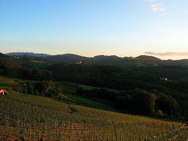 Abenddämmerung über den Weinbergen der Steiermark