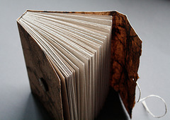 Birch journal (open)