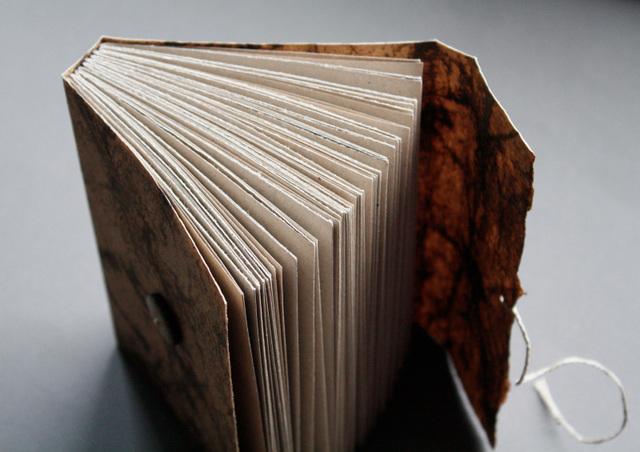 Birch journal (open)