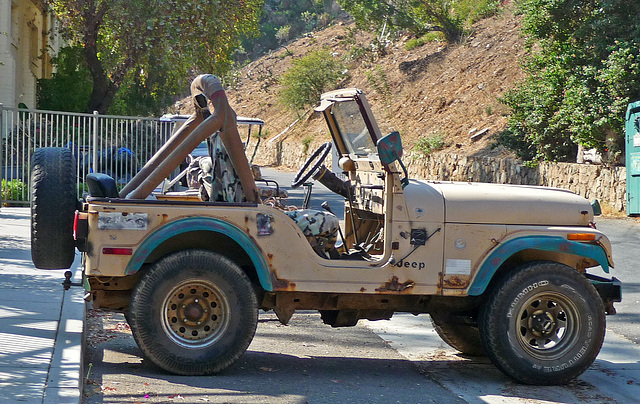 Jeep (1492)