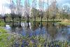 Nederland - Apeldoorn, Beekbergerwoud