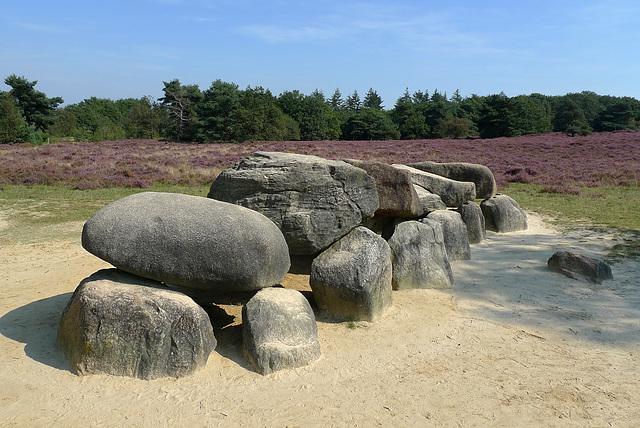 Nederland - Havelte, dolmen