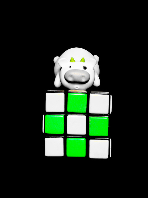 Moo ande green cube