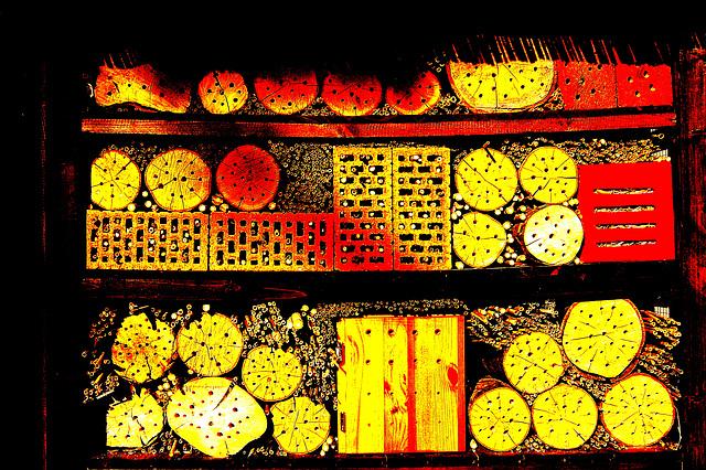 Kolora orgio en klara strukturo