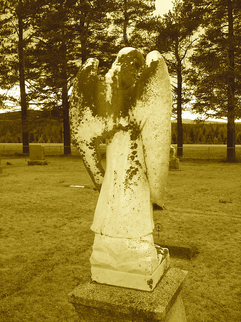 Mountain view cemetery. Saranac lake area.  NY. USA . March 29th 2009-  Sepia