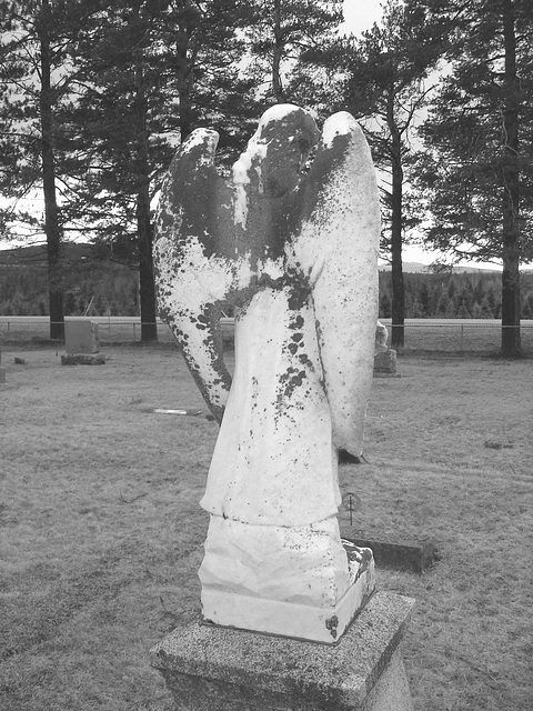 Mountain view cemetery. Saranac lake area.  NY. USA . March 29th 2009  -  B & W