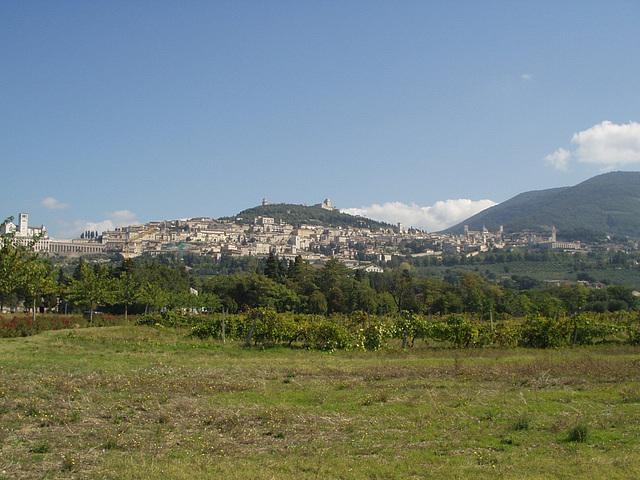 Assisi, 30.9.08, 1/22