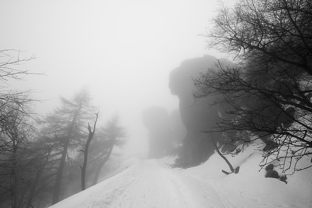 Nebel am Hohen Schneeberg (Decinsky Snesznik)