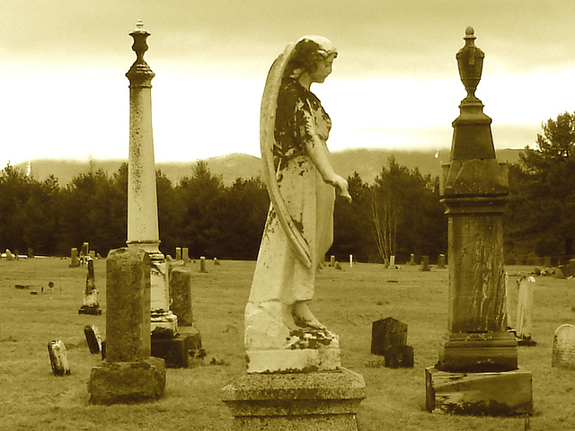 Mountain view cemetery. Saranac lake area.  NY. USA . March 29th 2009 -  Sepia