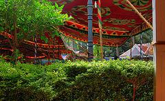 Under the shamyana