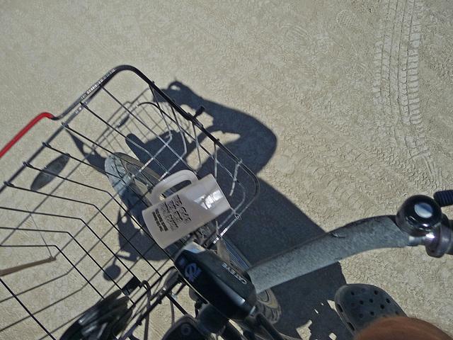 World Naked Bike Ride (0847)