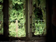 [ window ]