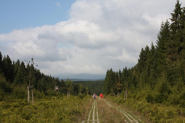 auf der ehemalige Grenze zur DDR