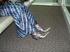 Jolie jeune Dame noire en bottes courtes à talons hauts - Black Lady in short high heeled boots