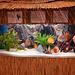 akvario_Bela ornamo kun pajleroj