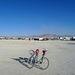 Abandoned Bikes (1268)