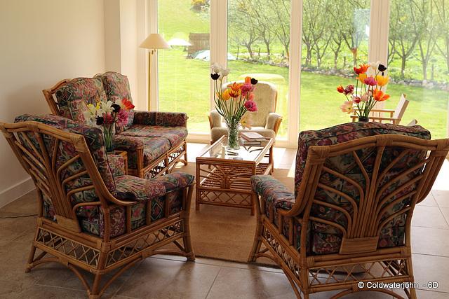 Tulip Lovers' sunroom