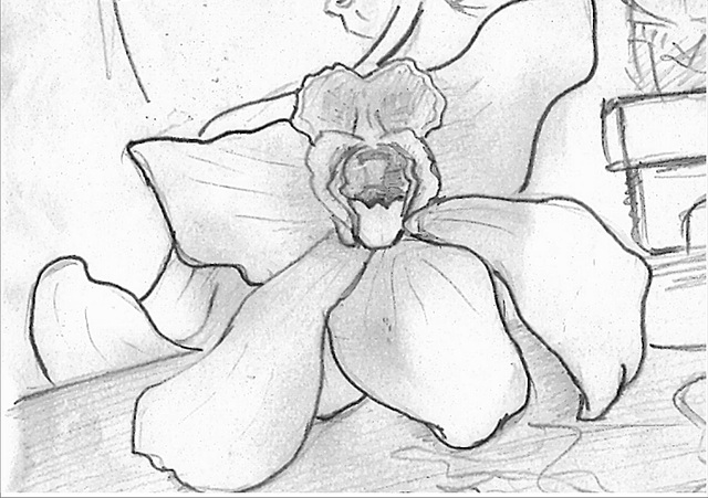 detalo 5 - orkideo - 2004