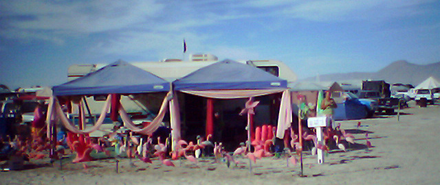 Pink Flamingo Corner (0009)