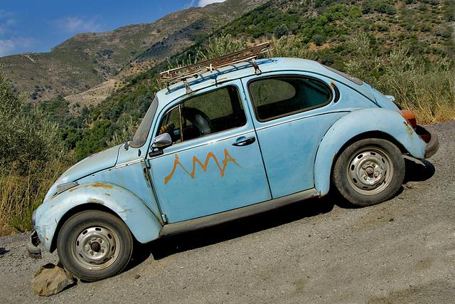 Ancient Blue Bug