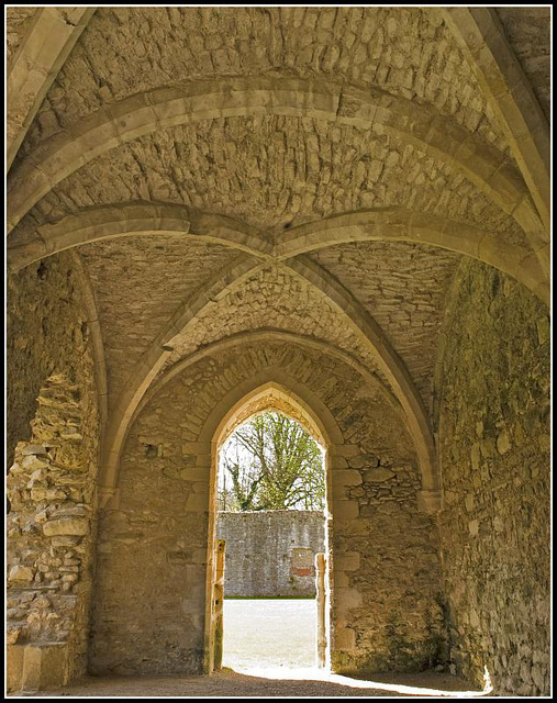 Netley Abbey Ceiling