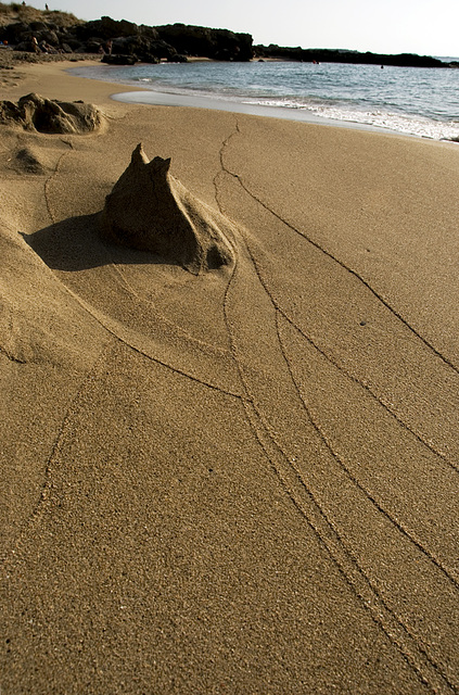 Traces in the sand......