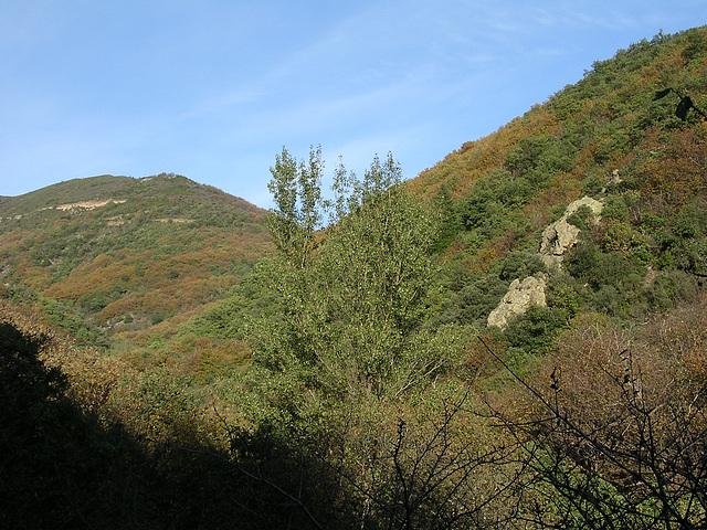 st et et sete automne 2005 044