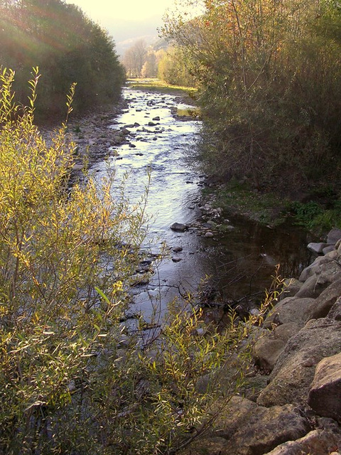 automne dans l'Hérault