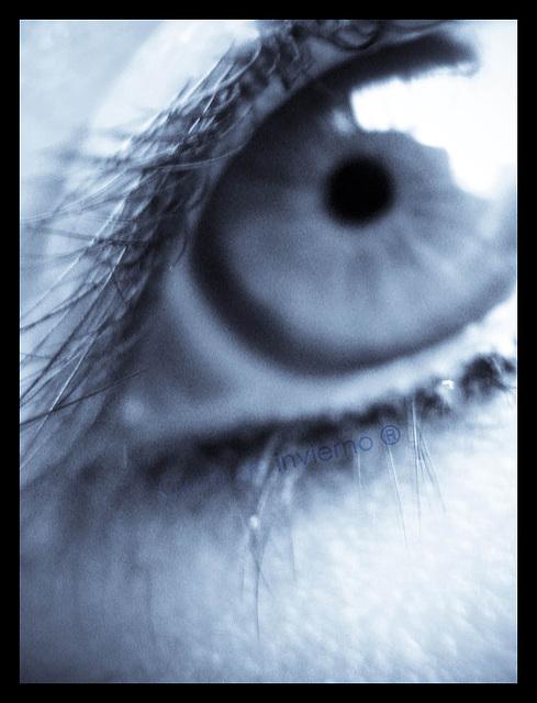 Blue and Iris