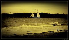 Sailing on a november day