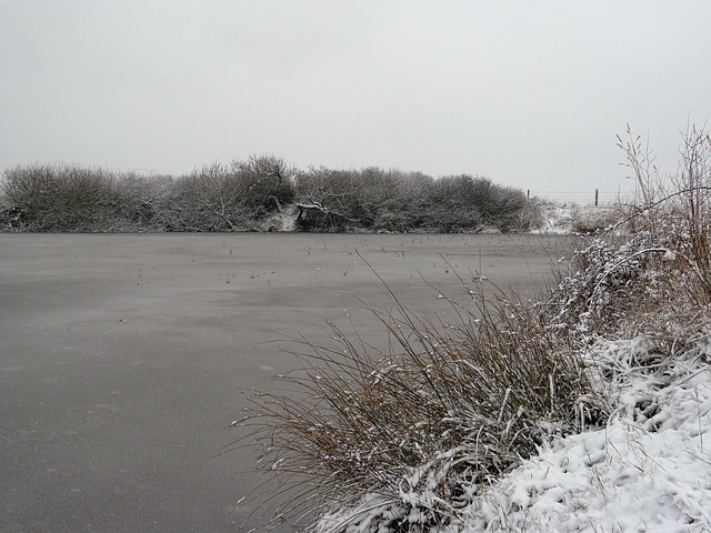 Hastings Country Park On Frozen Pond 3