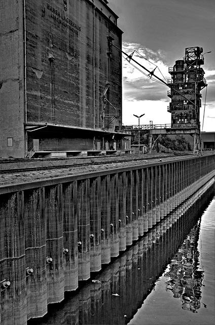 Harbour Albern - 002