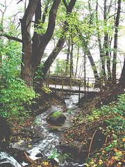 Ruisseau et pont mignon / Little stream and prety small bridge- Båstad /  Suède.