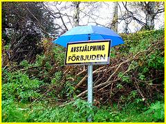 Bastad en Suède - Sexual intercourses forbidden ??  ....Débats amoureux interdits ?? .....Traduction SVP. 21 octobre 2008