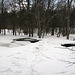 Ice on Jackson creek