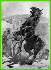 Bucéphale, le cheval d'Alexandre le Grand